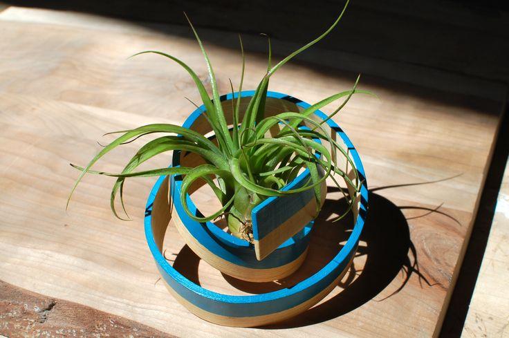 Art of Plants