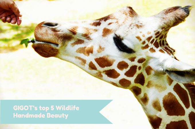 Happy international wildlife day!