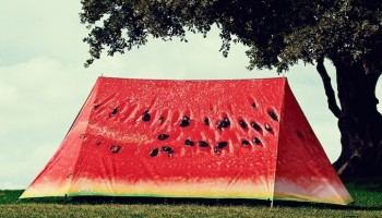 Celebrate, go glamping and have a good time with Field Candy