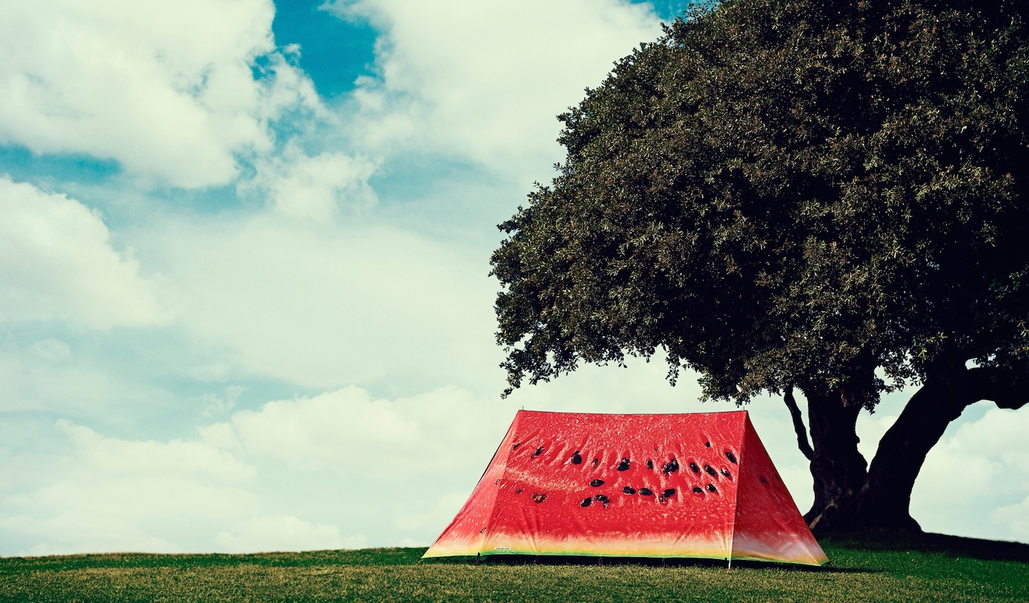 Celebrate, go glamping and have a good time with Field Candy: Full story on the blog!