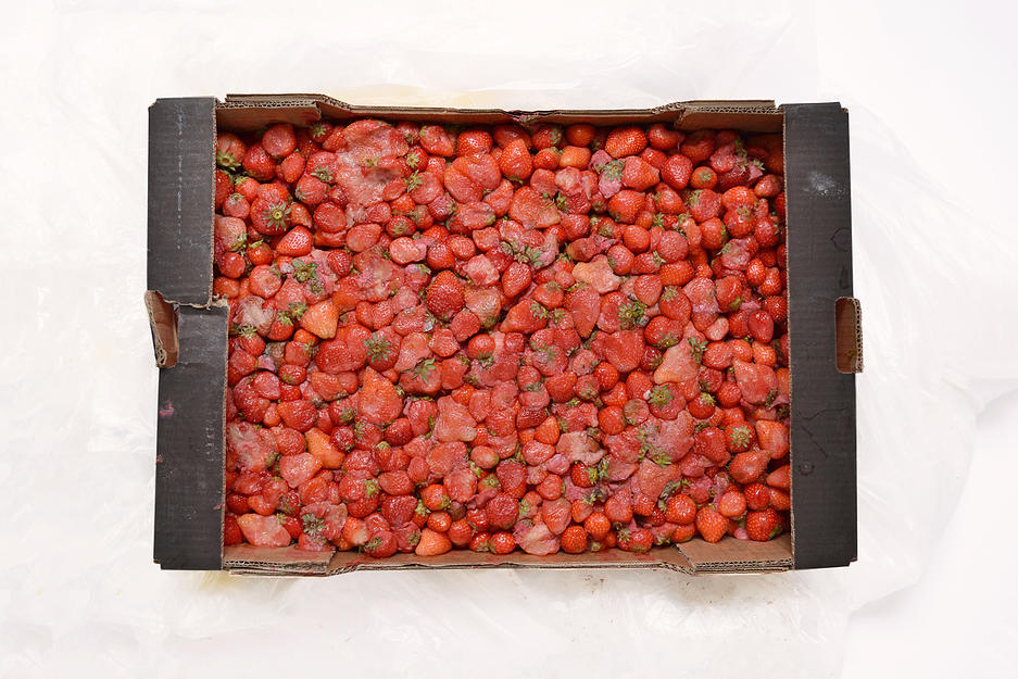 Leather made from discarded fruit.. whoa upcycling!