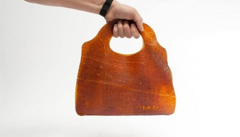 Move over cows, fruitleather is here!